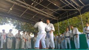 Nos quelques judokas sévriens en kimono pour l'occasion.